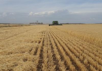 Komisia je pripravená naďalej podporovať agropotravinársky sektor EÚ