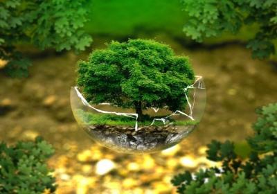 Zelená dohoda: Komisia prijala novú stratégiu pre chemické látky v záujme netoxického prostredia